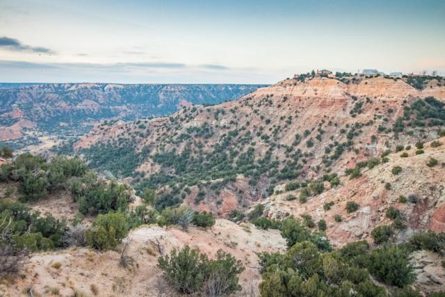 Palo Duro Tract 2, Canyon, TX 79015 (#19-1240) :: Lyons Realty
