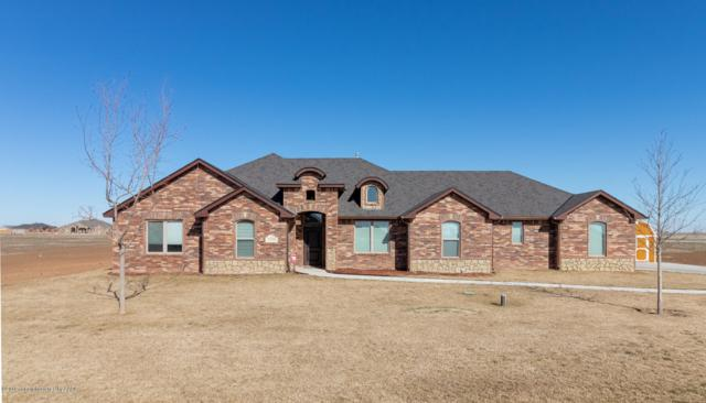17750 Star Gazer Ln, Amarillo, TX 79124 (#19-1251) :: Elite Real Estate Group