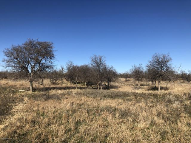 Shryoc Ranch On Fm 1642, Dodson, TX 79230 (#19-1268) :: Elite Real Estate Group