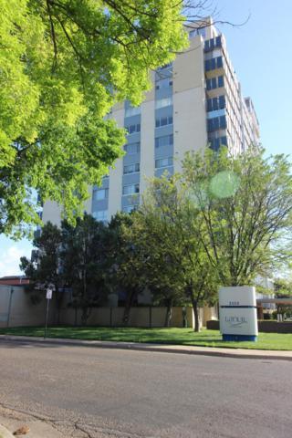2028 S. Austin #1202 St, Amarillo, TX 79109 (#19-1310) :: Edge Realty