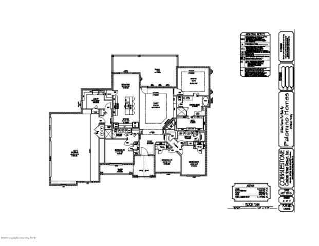 20360 Firefly Ln, Canyon, TX 79015 (#19-1539) :: Big Texas Real Estate Group