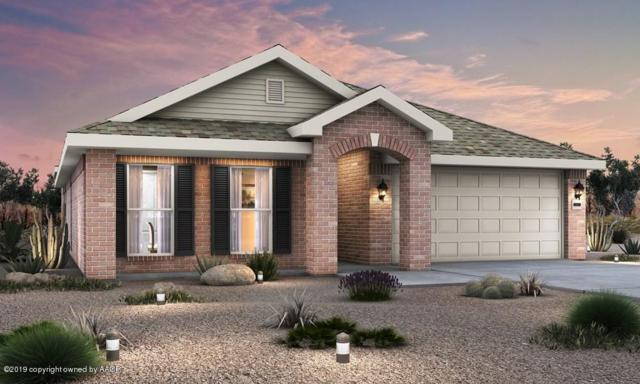 9311 Sydney Dr, Amarillo, TX 79119 (#19-1541) :: Elite Real Estate Group