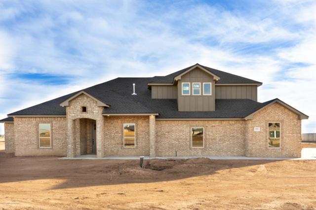 9625 Help Ln, Amarillo, TX 79119 (#19-1566) :: Lyons Realty