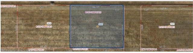 9601 Fm 2219, Amarillo, TX 79119 (#19-1572) :: Big Texas Real Estate Group