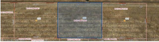 9651 Fm 2219, Amarillo, TX 79119 (#19-1573) :: Big Texas Real Estate Group