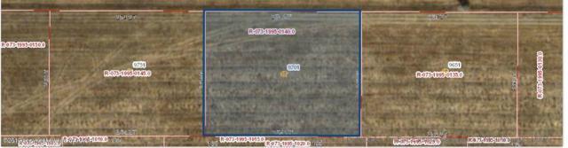 9701 Fm 2219, Amarillo, TX 79119 (#19-1574) :: Big Texas Real Estate Group