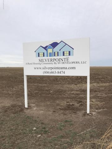 0 Silverpointe, Amarillo, TX 79124 (#19-1602) :: Big Texas Real Estate Group