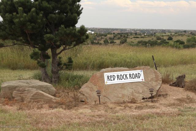 6600 Red Rock Rd, Amarillo, TX 79118 (#19-1618) :: Big Texas Real Estate Group
