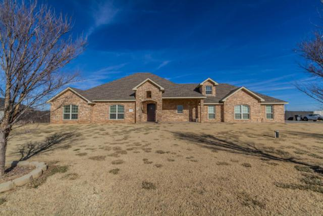 19250 Saddlehorn Rd, Bushland, TX 79119 (#19-162) :: Elite Real Estate Group