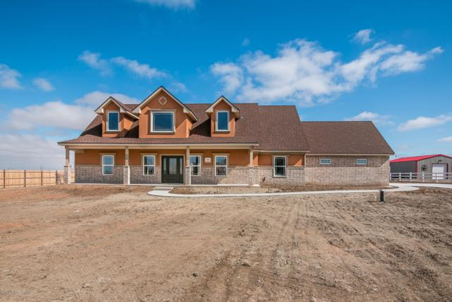 8801 Flint St, Amarillo, TX 79118 (#19-1682) :: Elite Real Estate Group