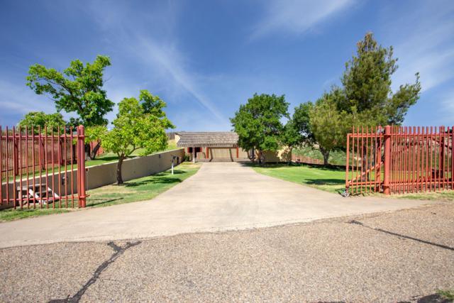 606 Michael Ln, Amarillo, TX 79118 (#19-1969) :: Elite Real Estate Group