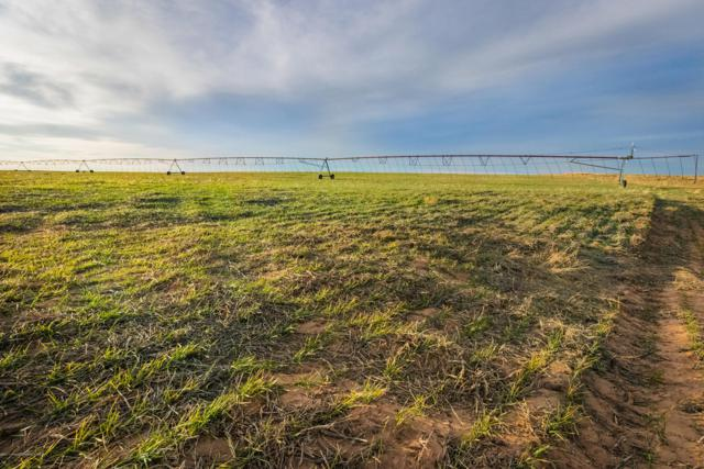 Texline Farm, Texline, TX 79087 (#19-1975) :: RE/MAX Town and Country