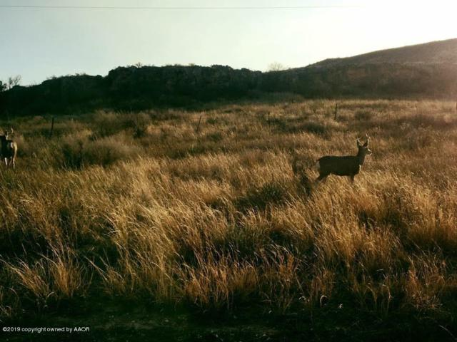 13201 Bluff Ridge Trl Trl, Canyon, TX 79015 (#19-2120) :: Lyons Realty