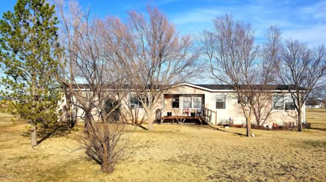 17401 Robin Rd, Canyon, TX 79015 (#19-2247) :: Big Texas Real Estate Group
