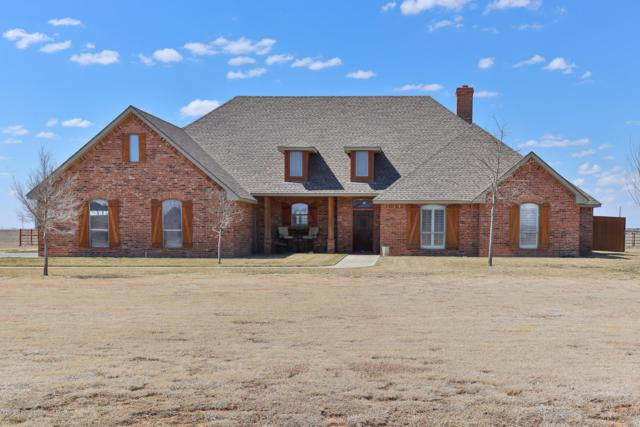 17450 White Wing Rd, Canyon, TX 79015 (#19-2286) :: Keller Williams Realty