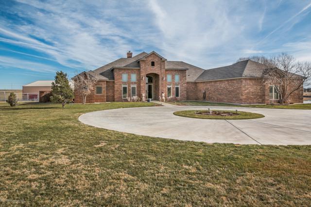 16321 Dove View Cir, Canyon, TX 79015 (#19-2332) :: Elite Real Estate Group