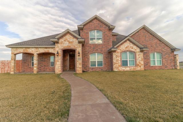 5101 Bushland Rd, Amarillo, TX 79119 (#19-2349) :: Elite Real Estate Group