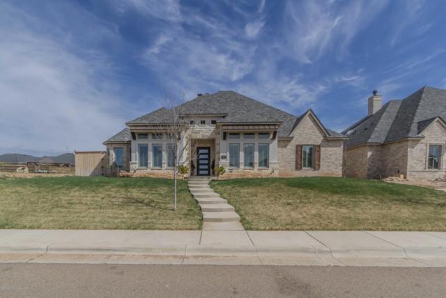 8002 Oakview Dr, Amarillo, TX 79119 (#19-2683) :: Edge Realty