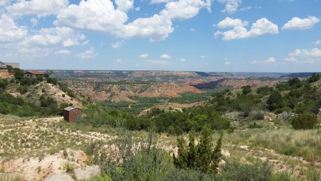 10460 Mountain Trail, Canyon, TX 79015 (#19-2688) :: Lyons Realty