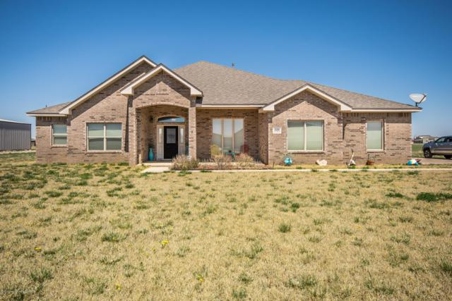 18200 Quail Crossing Rd, Bushland, TX 79124 (#19-2810) :: Edge Realty