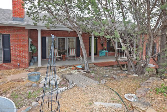 310 Shore Dr, Amarillo, TX 79118 (#19-2963) :: Lyons Realty