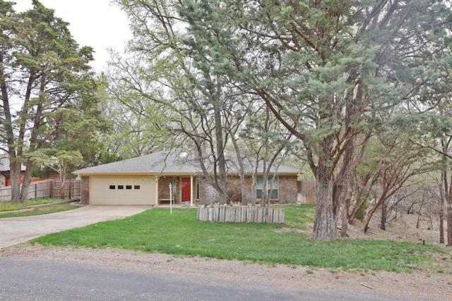 513 Shore Dr, Amarillo, TX 79118 (#19-2964) :: Lyons Realty