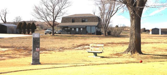 19320 Chaparral Rd, Canyon, TX 79015 (#19-304) :: Big Texas Real Estate Group