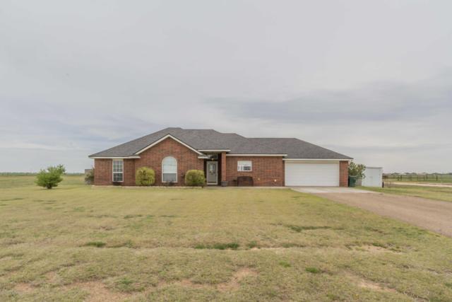 9900 Braden Dr, Canyon, TX 79015 (#19-3075) :: Edge Realty