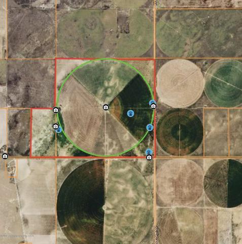 Sherman County +/-720, Sunray, TX 79086 (#19-3084) :: Elite Real Estate Group