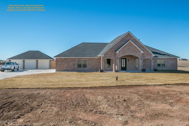 13221 Bluff Ridge Trl, Canyon, TX 79015 (#19-3231) :: Lyons Realty