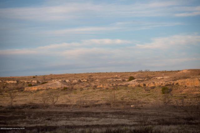13160 Bluff Ridge Trl, Canyon, TX 79015 (#19-3276) :: Lyons Realty
