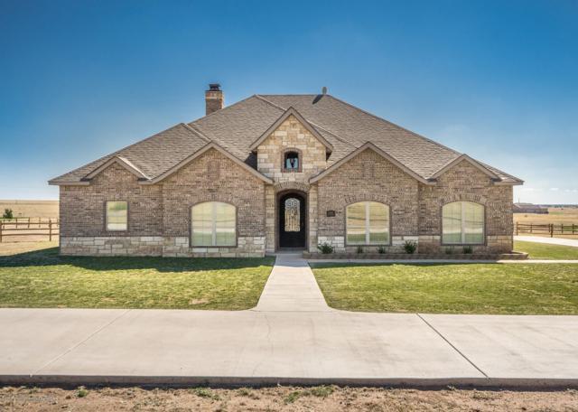 13151 Genevieves Way, Amarillo, TX 79118 (#19-3372) :: Elite Real Estate Group