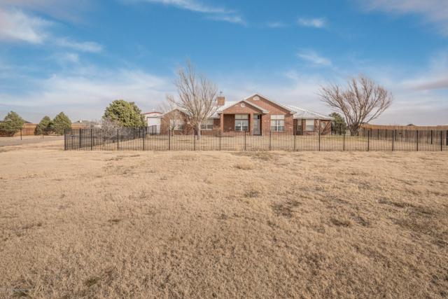 5601 Coyote Spgs, Amarillo, TX 79119 (#19-3437) :: Elite Real Estate Group