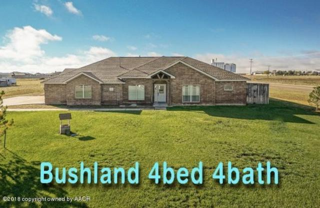19151 Sundancer Ln, Bushland, TX 79012 (#19-37) :: Elite Real Estate Group