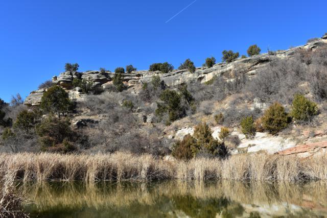 7501 Lake View Rd, Amarillo, TX 79118 (#19-3712) :: Lyons Realty