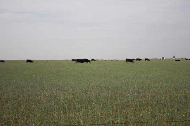 00 Highway 86, Dimmitt, TX 79027 (#19-3772) :: Lyons Realty