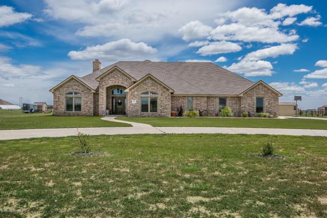 5401 Cedar Springs Trl, Bushland, TX 79119 (#19-3880) :: Edge Realty