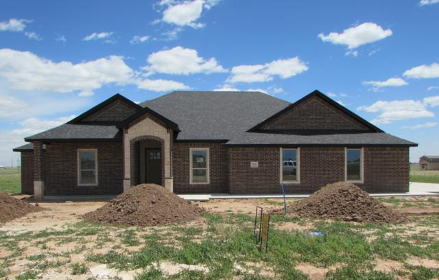 15371 Jack Cook Dr, Amarillo, TX 79119 (#19-3904) :: Big Texas Real Estate Group
