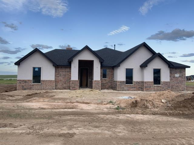 1250 Blakely Hollow Dr, Amarillo, TX 79124 (#19-4122) :: Lyons Realty