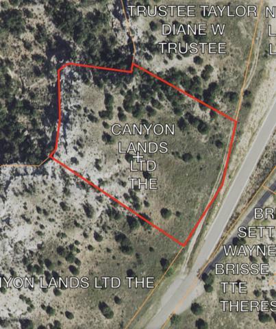 304 Lake Ridge Rd, Canyon, TX 79015 (#19-4187) :: Lyons Realty