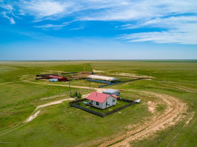 Albracht Ranch, Dimmitt, TX 79027 (#19-4215) :: Lyons Realty