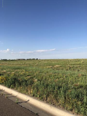 Spirit Trail, Dalhart, TX 79022 (#19-4305) :: Lyons Realty