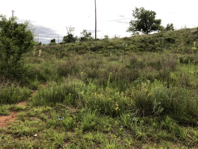 Lot: 102 Coon Dr., Fritch, TX 79036 (#19-4312) :: Elite Real Estate Group