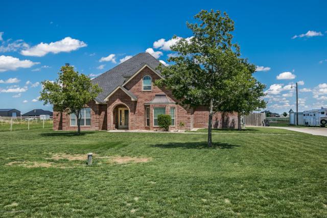 5001 Cedar Springs Trl, Amarillo, TX 79119 (#19-4335) :: Lyons Realty