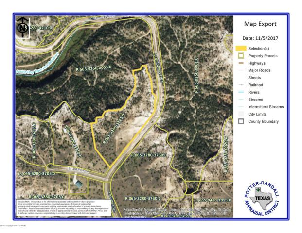 16100 Canyon Pass Rd, Amarillo, TX 79015 (#19-4367) :: Elite Real Estate Group
