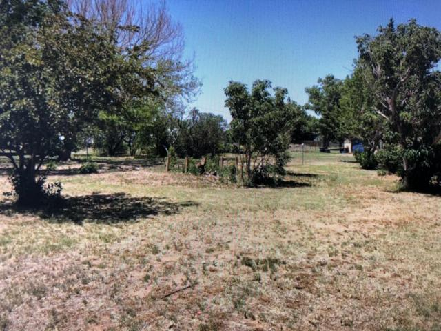 224 Ranch Rd, Fritch, TX 79036 (#19-4411) :: Elite Real Estate Group