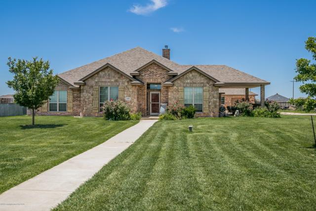 5300 Mesquite Springs Trl, Amarillo, TX 79119 (#19-4451) :: Lyons Realty