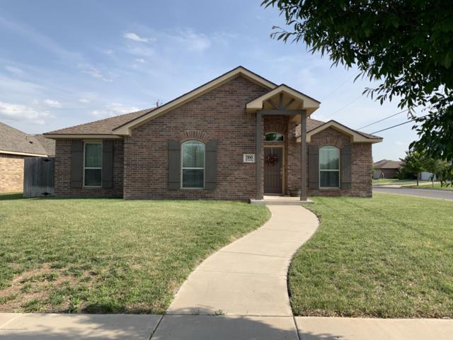 2100 45TH Ave, Amarillo, TX 79118 (#19-4521) :: Elite Real Estate Group