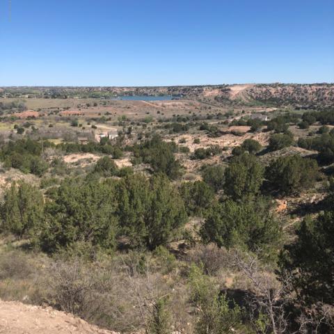 12921 Montana Way, Amarillo, TX 79118 (#19-4629) :: Elite Real Estate Group