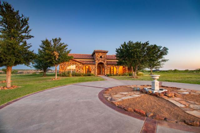 6700 Red Rock Rd, Amarillo, TX 79118 (#19-4693) :: Elite Real Estate Group